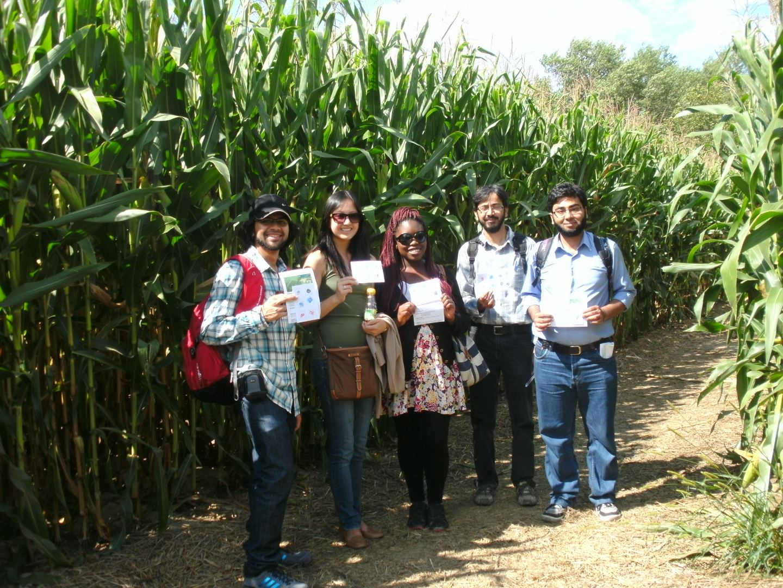 Stipendiaten im Maisfeld